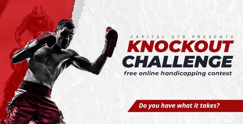 Knockout Challenge